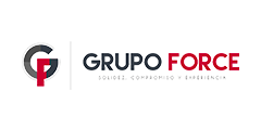 Grupo Force